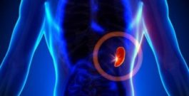 Enlarged spleen: symptoms, causes and treatment