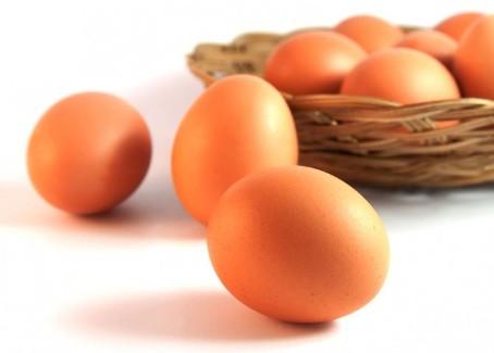 symptoms of egg allergy
