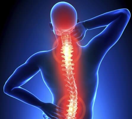 myth of back pain