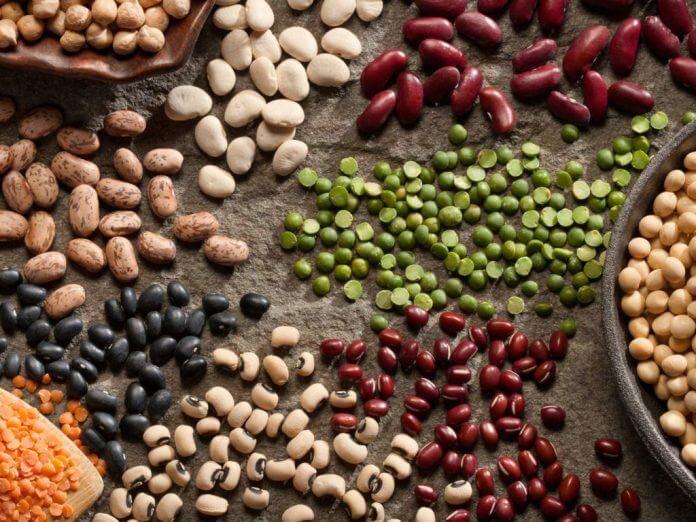 vitamin b5 food